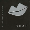 shap-now-or-never